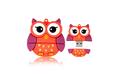 """Флешка Резиновая Глазастая Сова """"Big Eyed Owl"""" Q387"""